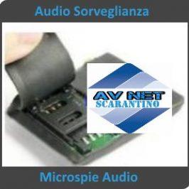 Audio sorveglianza